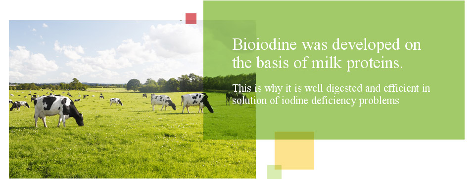 Bioiodine was developed on the basis of milk proteins